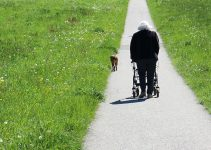 Best Narrow Walker for Seniors with Small Spaces:Review and Buyer's Guide