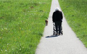 narrow walkers for seniors