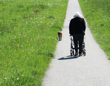 narrow walkers for seniors