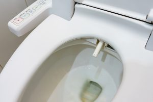bidet for elderly and handicapped