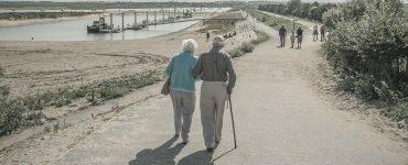 best walking canes