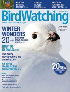 BirdWatching Magazine